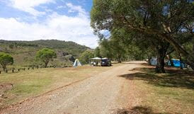 Blue Waterholes campground, Kosciuszko National Park. Photo: Elinor Sheargold