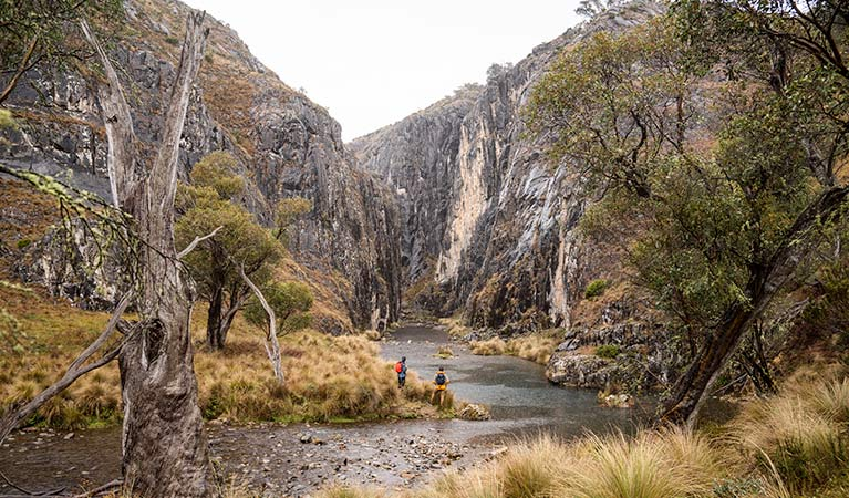 Two men stand on a riverbank in Clarke Gorge, in the High Plains area of Kosciuszko National Park. Photo: Robert Mulally/DPIE