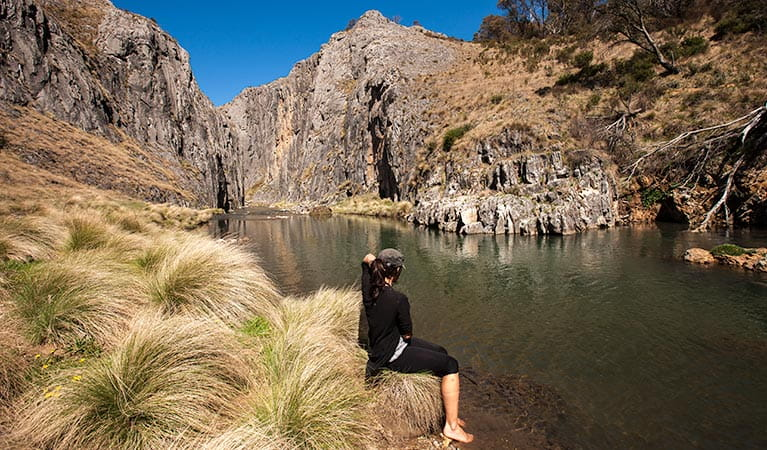 Clarke Gorge walking track , Kosciuszko National Park. Photo: Murray Vanderveer/DPIE