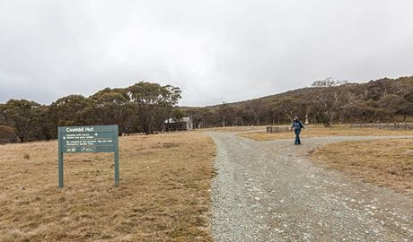 Cooinbil Hut campground, Kosciuszko National Park. Photo: Murray Vandaveer/NSW Government