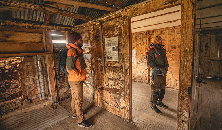 Two men read newspapers lining the walls of a Coolamine Homestead building, Kosciuszko National Park. Photo: Robert Mulally/DPIE