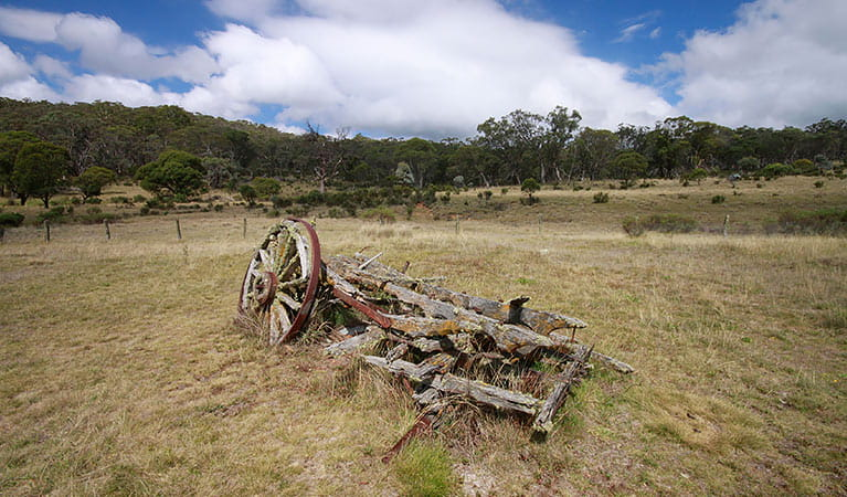 Remnants of farming equipment at Coolamine Homestead, Kosciuszko National Park. Photo: Elinor Sheargold/DPIE