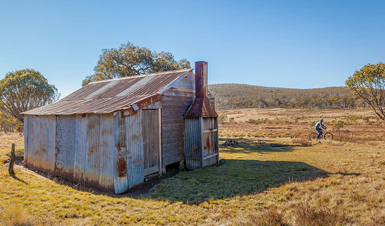 A cyclist at Gavels Hut, Kosciuszko National Park. Photo: Copyright Murray Vanderveer/DPIE