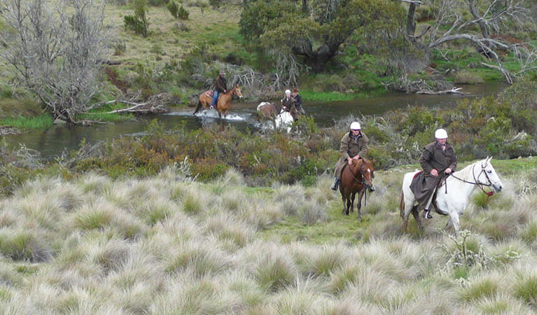 Horse riders cross a river in Kosciuszko National Park. Photo: Sam Vivers