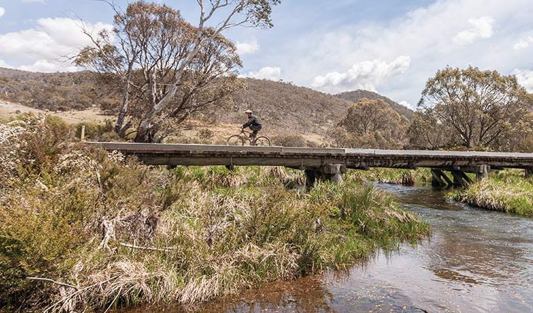 Murrumbidgee mountain bike ride in northern Kosciuszko National Park. Photo: Murray Vanderveer/DPIE