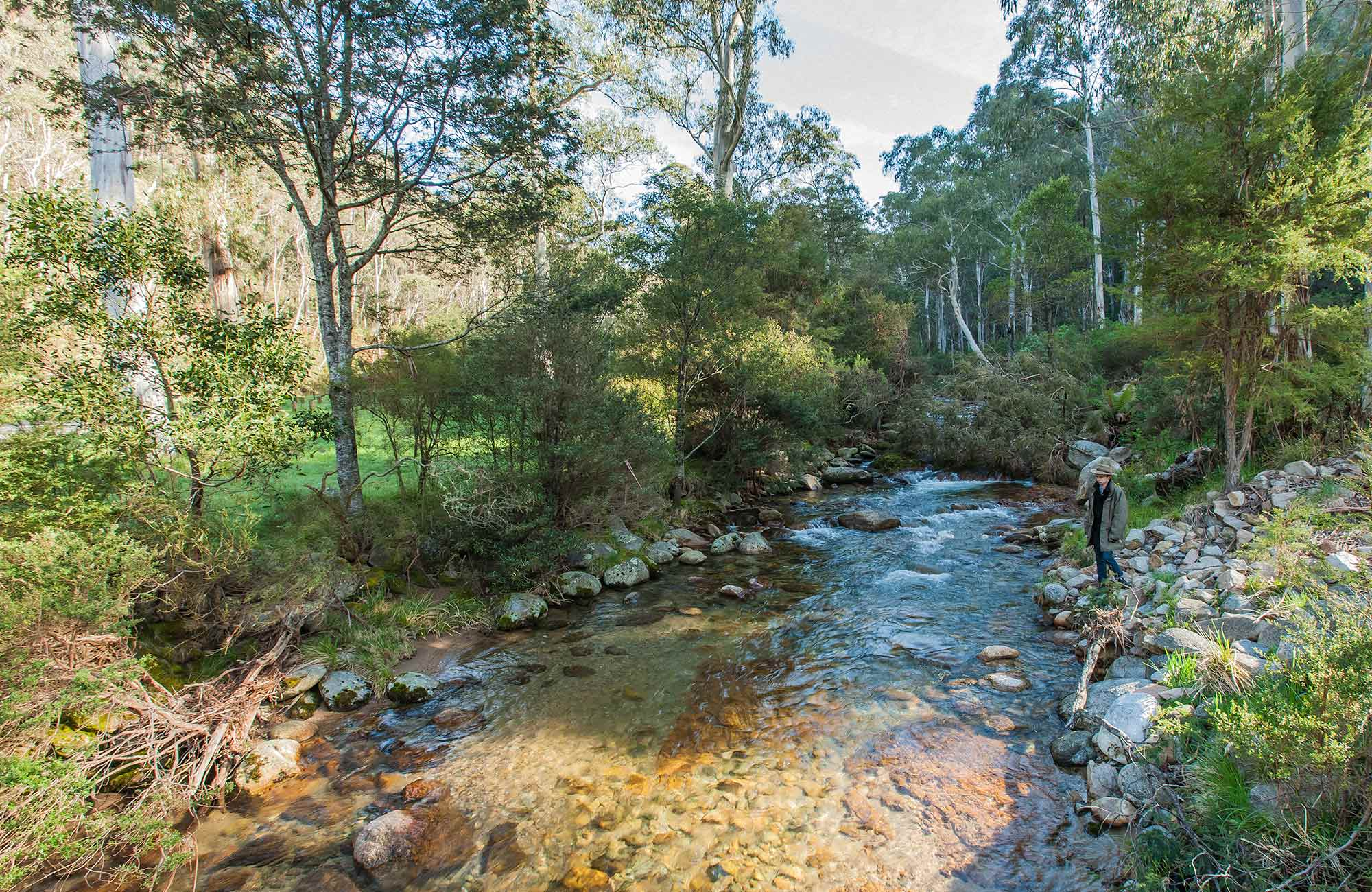 Leatherbarrel Creek picnic area, Kosciuszko National Park. Photo: Murray Vanderveer