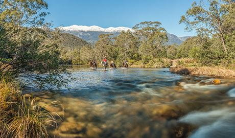 A group of horse riders cross Swampy Plain River along Bicentennial National trail in the Khancoban area of Kosciuszko National Park. Photo: Murray Vanderveer © DPIE