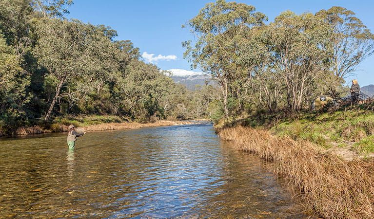 A woman stands in the Swampy Plain River fly fishing, Kosciuszko National Park. Photo: Murray Vanderveer/OEH