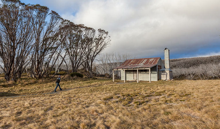 A man walks towards Bradleys and O'Briens Hut, Kosciuszko National Park. Photo: Murray Vanderveer/OEH