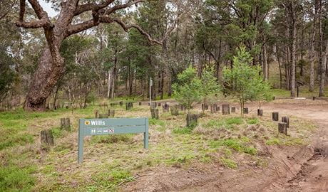 Willis picnic area, Kosciuszko National Park. Photo: Murray Vanderveer/DPIE