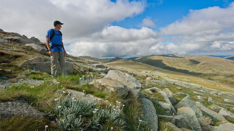 Main Range walk, Kosciuszko National Park. Photo: Clint and Todd Wright