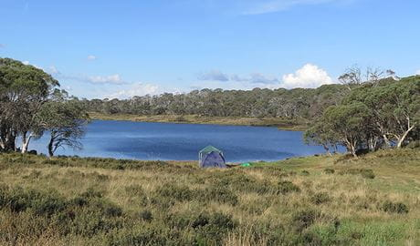 Three Mile Dam campground, Kosciuszko National Park. Photo: Elinor Sheargold/DPIE