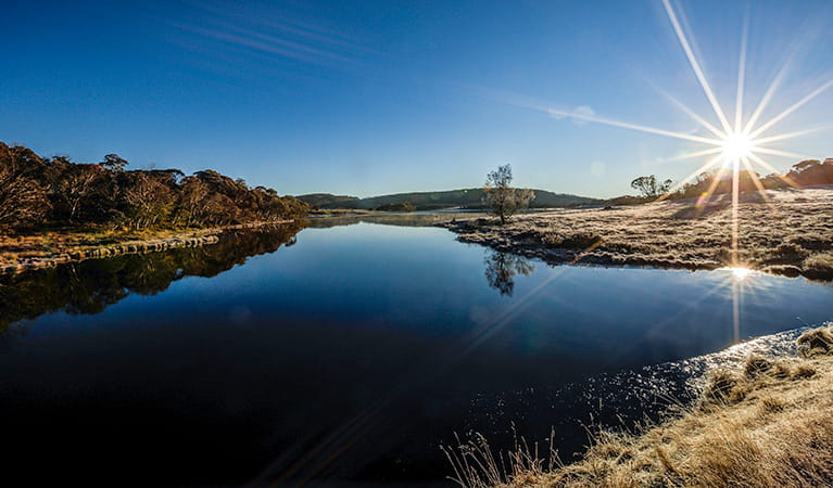 Three Mile Dam campground, Kosciuszko National Park. Photo: Murray Vanderveer/NSW Government
