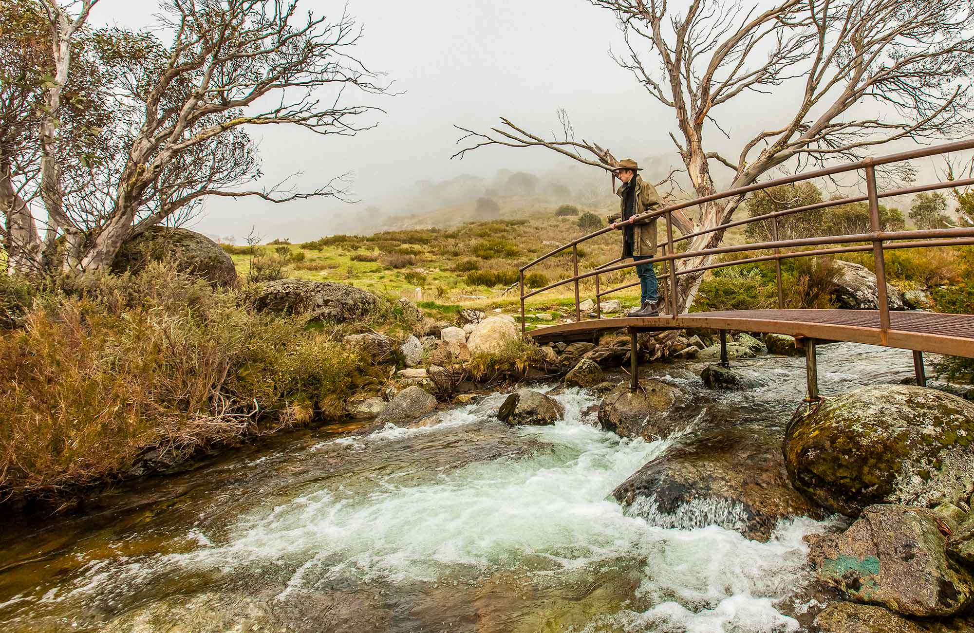 Dead Horse Gap walking track, Kosciuszko National Park. Photo: Murray Vanderveer