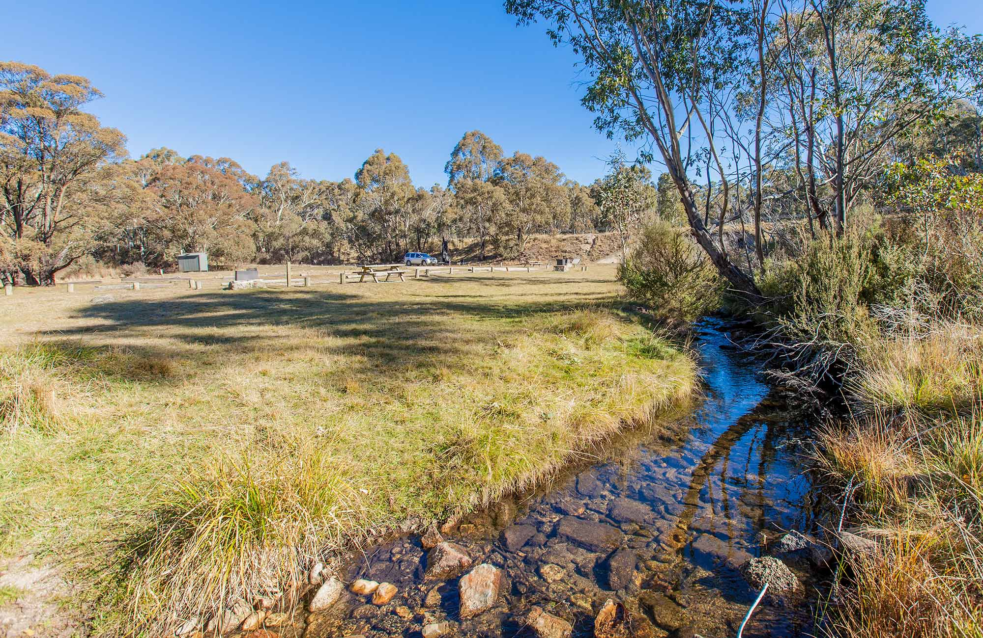 Sawpit Creek runs past Sawpit Creek picnic area, Kosciuszko National Park. Photo: Murray Vanderveer