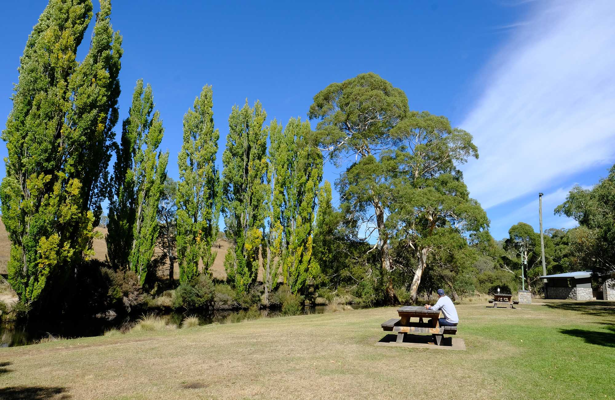 A man sits at a picnic table at Thredbo River picnic area, Kosciuszko National Park. Photo: Elinor Sheargold/DPIE