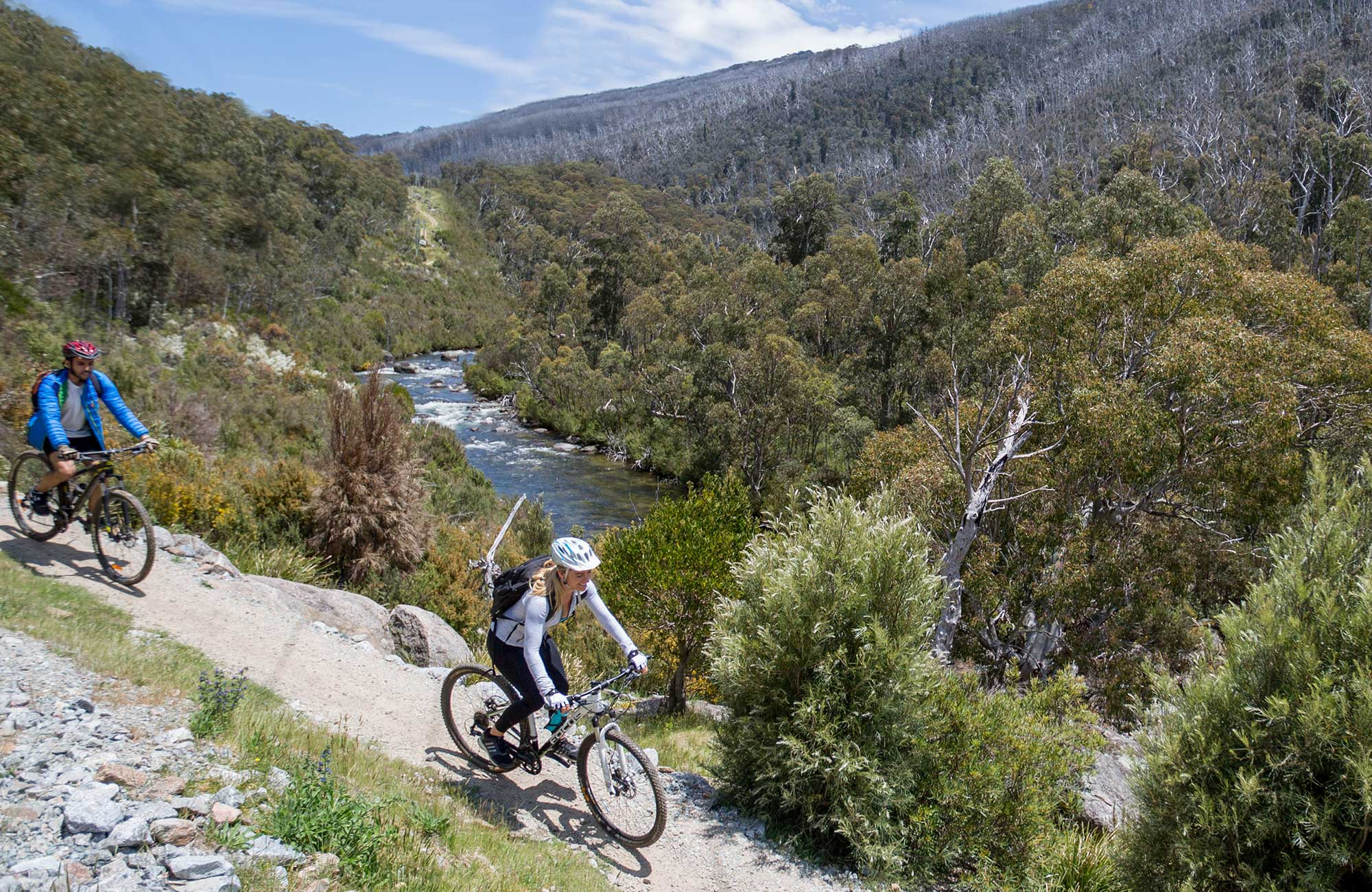 Two mountain bikers ride beside the Thredbo River on Thredbo Valley track, Kosciuszko National Park. Photo: Boen Ferguson/OEH