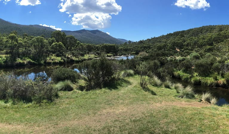 Views of Thredbo River from Bullocks Hut, Kosciuszko National Park. Photo: Stephen Townsend/OEH