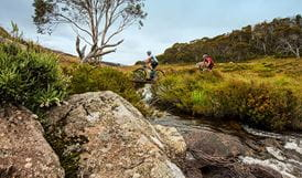 Cascade Hut multi-use trail, Kosciuszko National Park. Photo: Murray van der Veer