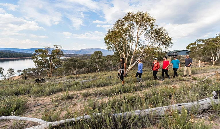Six friends enjoy a walk near Creel Lodge, Kosciuszko National Park. Photo: Boen Ferguson/OEH.