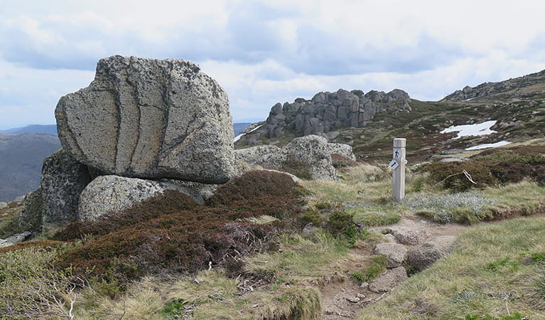 A dirt path passes a signpost and rocks atop Dead Horse Gap walking track, Kosciuszko National Park. Photo: Elinor Sheargold/DPIE