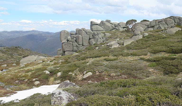 A granite rock formation along Dead Horse Gap walking track, Kosciuszko National Park. Photo: Elinor Sheargold/DPIE