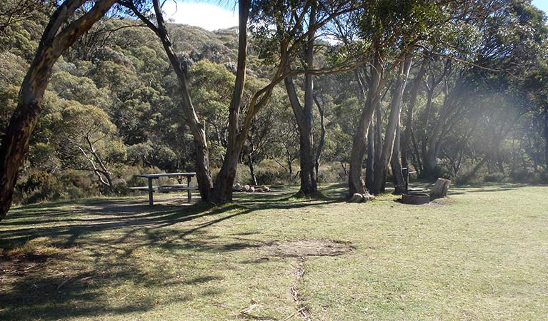 A flat, grassy campsite beside trees at Gungarlin River campground, Kosciuszko National Park. Photo: Andrew Miller/OEH