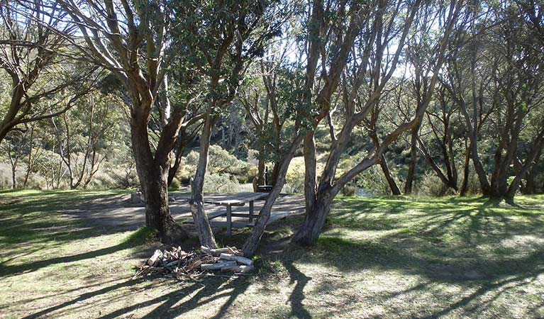 A shady unmarked campsite under trees at Gungarlin River campground, Kosciuszko National Park. Photo: Andrew Miller/OEH