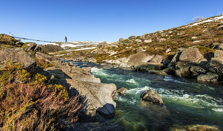 Illawong walk, Kosciuszko National Park. Photo: Murray van der Veer