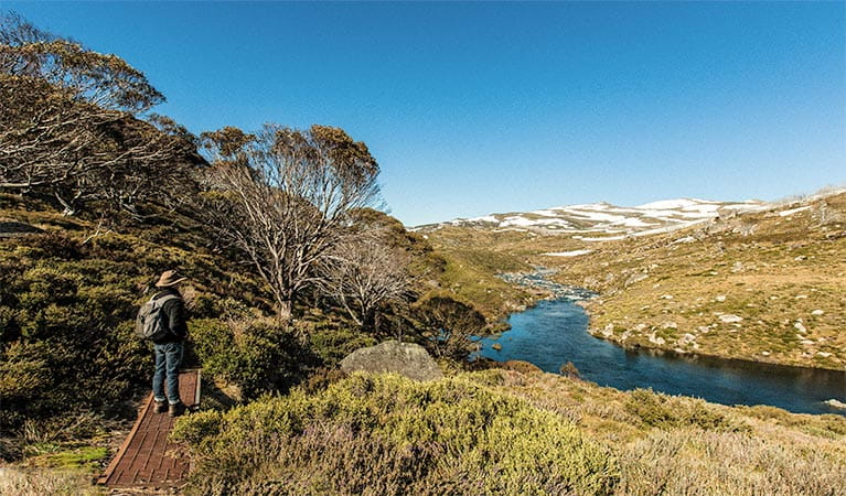 Illawong track, Kosciuszko National Park. Photo: Murray van der Veer