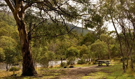 Island Bend campground, Mount Kosciuszko National Park. Photo: John Spencer
