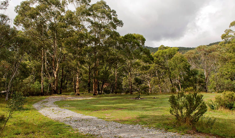 Island Bend campground, Kosciuszko National Park. Photo: John Spencer/DPIE