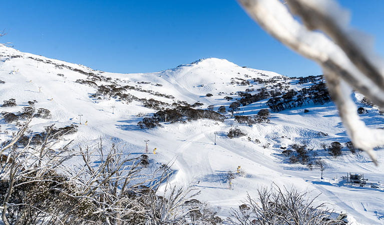 View of snow covered mountains at Perisher Ski Resort, in Kosciuszko National Park. Photo: Images supplied courtesy of Perisher Ski Resort