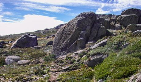 Mount Stilwell Walk, Kosciuszko National Park. Photo: OEH