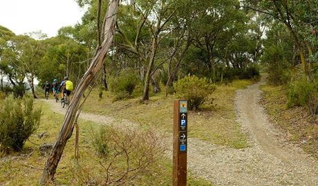 Biker riders pass Muzzlewood track signage, Kosciuszko National Park. Photo: E Sheargold/OEH