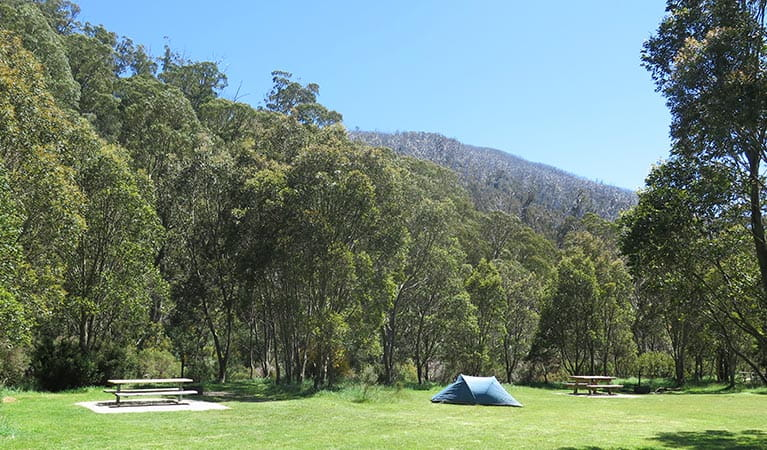Tent at Ngarigo campground, Kosciuszko National Park. Photo: E Sheargold/OEH