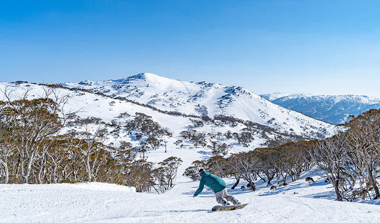 A lone snowboarder rides slopes at Perisher Resort against a backdrop of the Snowy Mountains. Photo: Images supplied courtesy of Perisher Ski Resort