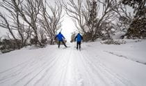 Perisher Range cross-country ski trails, Kosciuszko National Park. Photo: John Spencer