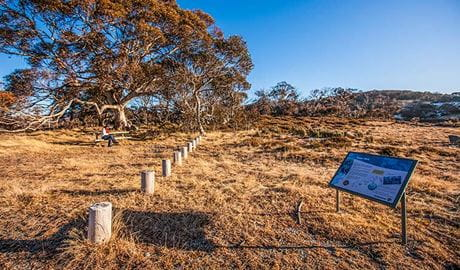Rennix walking track, Kosciuszko National Park. Photo: Murray Vanderveer