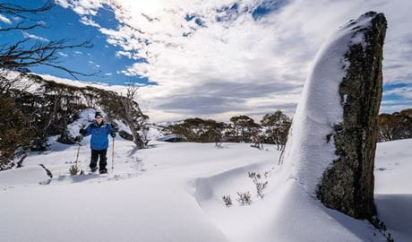 Try shoeshoeing Perisher's Rock Creek in Kosciuszko National Park. Photo: John Spencer/OEH