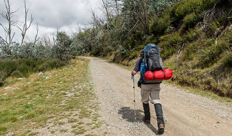 A hiker with backpack walks up Schlink Pass Road, near Guthega, Kosciuszko National Park. Photo: John Spencer/OEH.