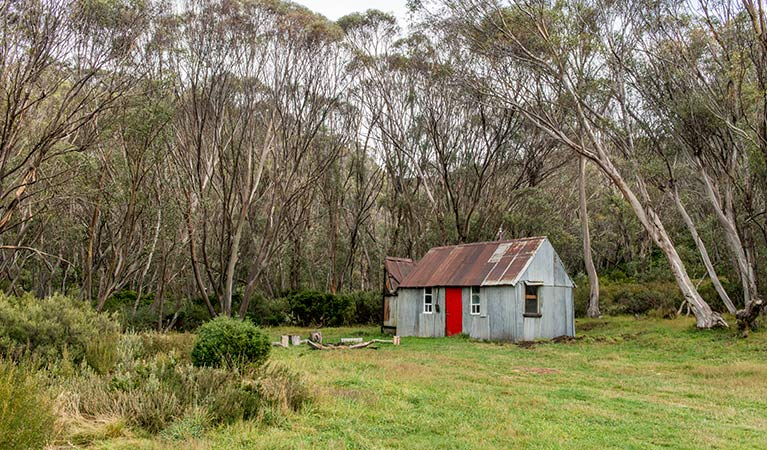 Corrugated iron Horse Camp Hut surrounded by forest, Schlink Hut walk in Kosciuszko National Park. Photo: John Spencer/OEH