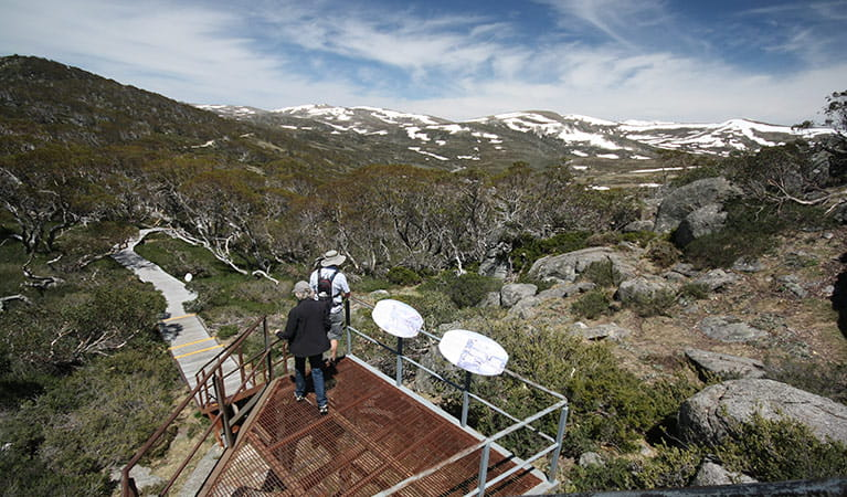 Main Range lookout on Snow Gums boardwalk, Kosciuszko National Park. Photo: E Sheargold/OEH