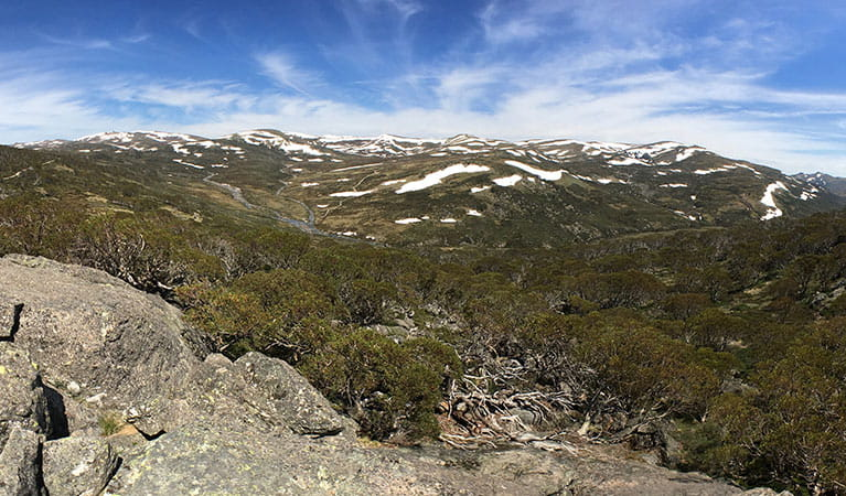 Views of the Main Range from Snow Gums boardwalk, Kosciuszko National Park. Photo: Stephen Townsend