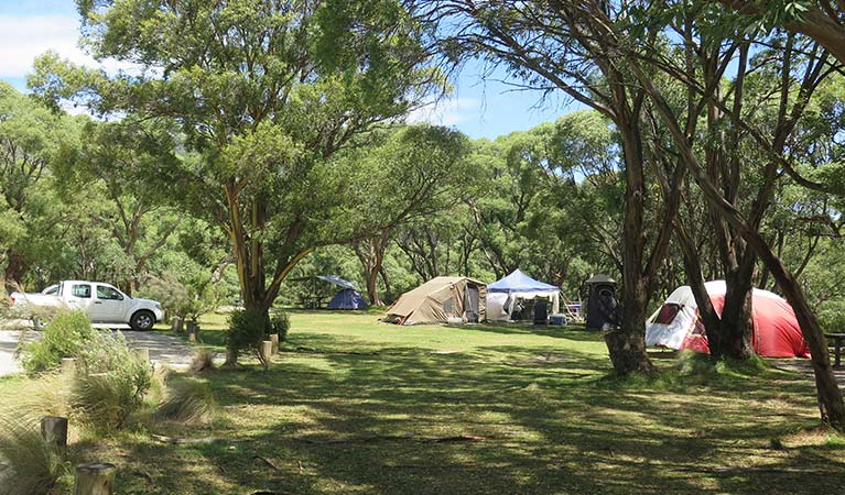 Tent campsites at Thredbo Diggings campground in Kosciuszko National Park. Photo: E sheargold/OEH