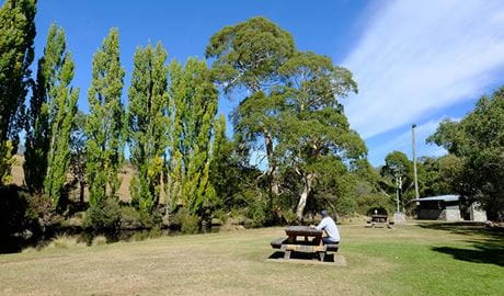 A man sits at a picnic table at Thredbo River picnic area in Kosciuszko National Park. Photo: Elinor Sheargold/DPIE