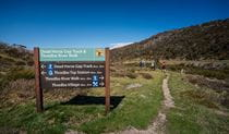 4 people walking past directional signage on Thredbo River track in Kosciusko National Park. Photo: Robert Mulally/DPIE