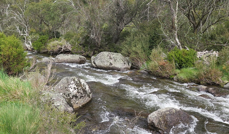 Signage at the end of Thredbo River track. Photo: E Sheargold/OEH