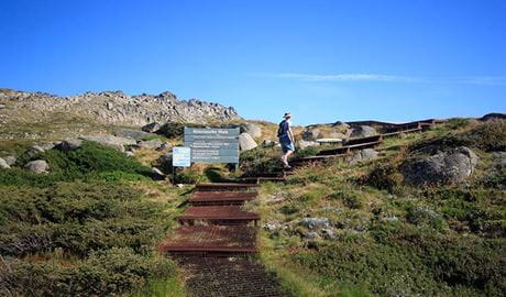 Thredbo to Mount Kosciuszko walk, Kosciuszko National Park. Photo: Elinor Sheargold