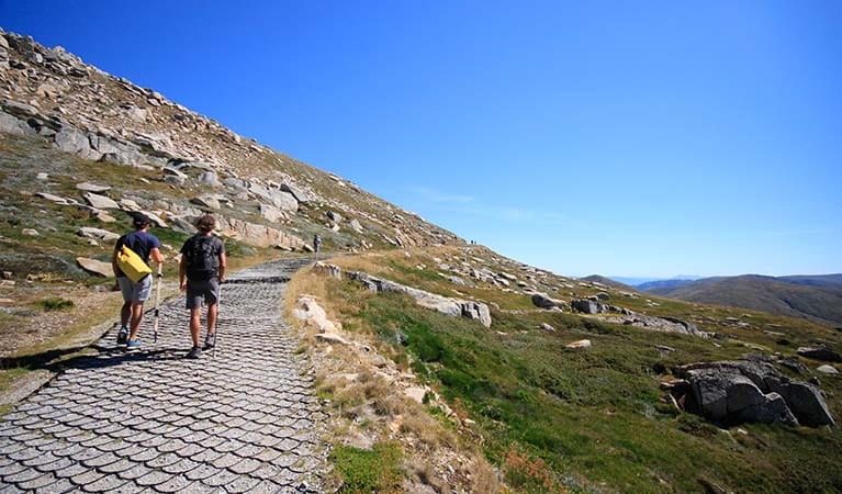 Walking up Mount Kosciuszko to the summit, Kosciuszko National Park. Photo: Elinor Sheargold